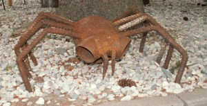 Die Spinne - auch ein Projekt der Förderschüler